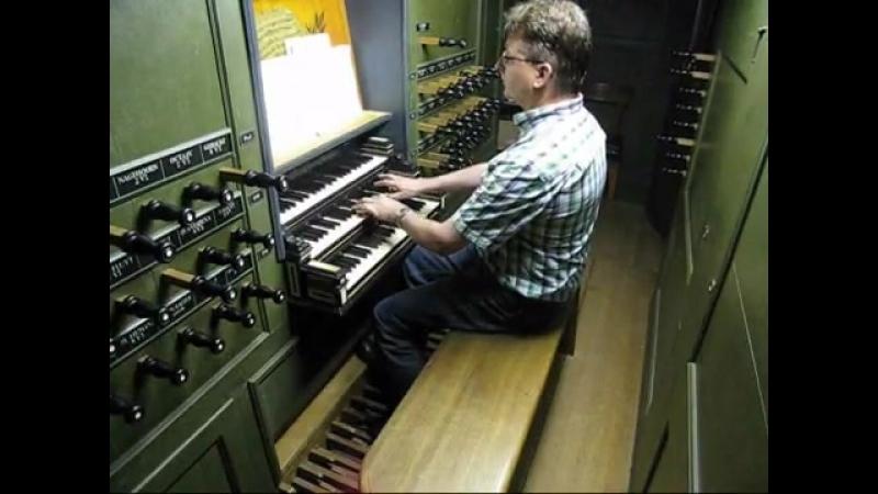 667 J. S. Bach - Chorale prelude Komm, Gott Schöpfer, heiliger Geist, BWV 667 - Pieter Pilon
