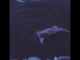 Клэр Иган купается в проруби