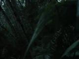 Miami Vice glades music  (S01-E09)