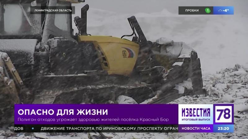 Полигон отходов угрожает здоровью жителей Красного бора