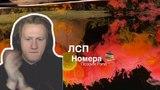 Даня Кашин Смотрит - ЛСП Номера (запрещён в РФ) Реакция DK Запрещённый Клип
