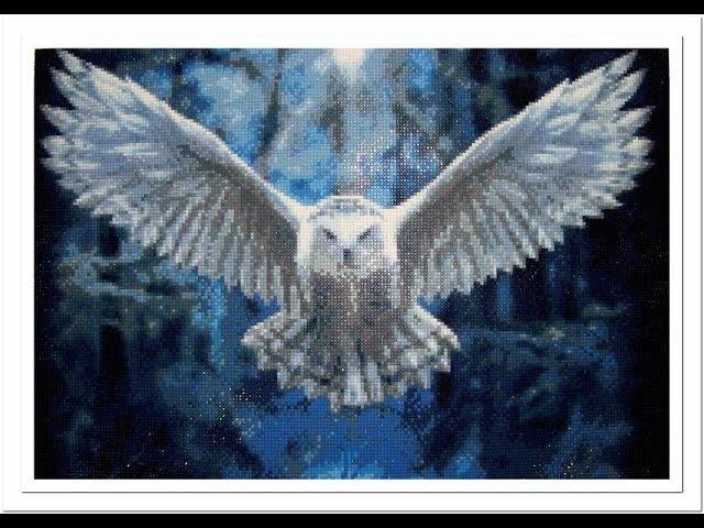Алмазная вышивка «Сова». Квадратные алмазы. Diamond embroidery