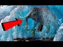 10 ЖИВОТНЫХ, замороженых ВО ВРЕМЕНИ (ТАЕТ ЛЕД )