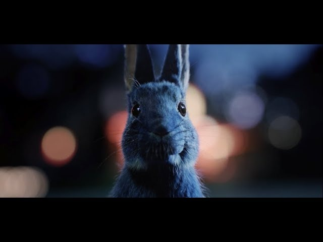 Follow The Rabbit - Priority Tickets to unforgettable live music nationwide | O2