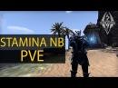 Стамина НБ ПВЕ, несколько вариантов сборки для соло и данжей Stamina NB PVE