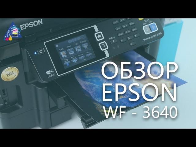 Обзор бесчипового МФУ Epson WF-3640