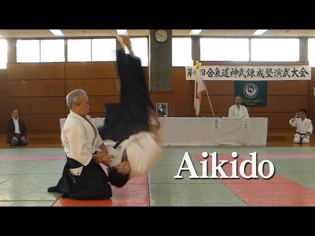 Aikido Shirakawa Katsutoshi shihan 合気道 白川勝敏 師範 2017
