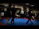 Открытый ковёр по MMA ШамхалVSМарк