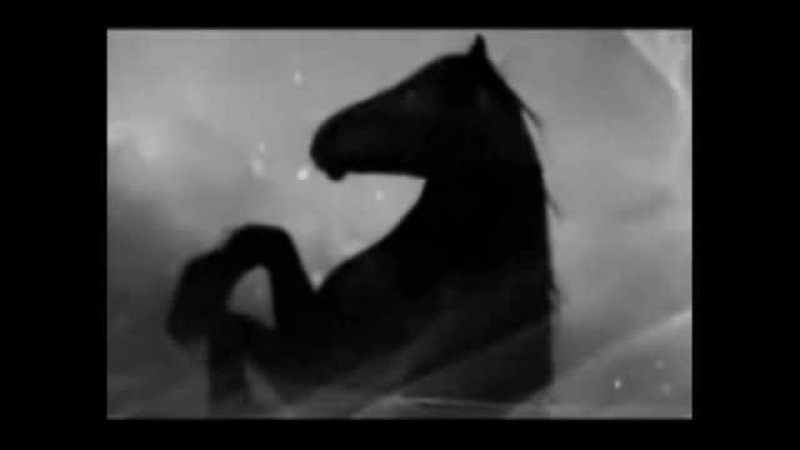 Krbi - Wild Horse Blues (bottleneck guitar)