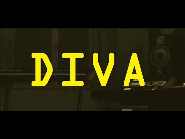 【Vocaloid Cover】DIVA (MIKU Kiji arrange)【Cyber Diva】