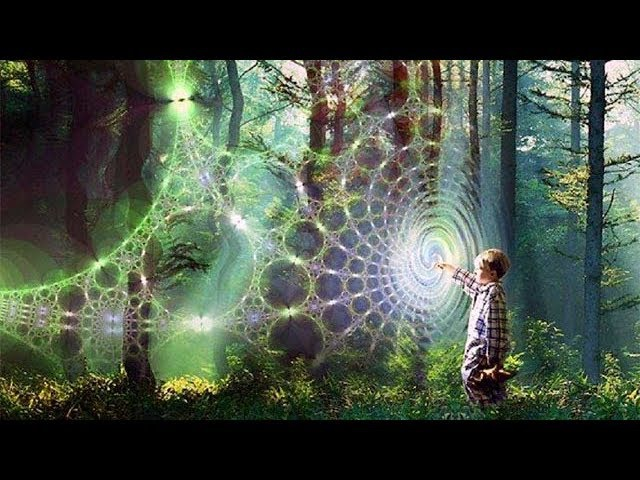Скорость взаимодействия - Вайшнава Прана дас