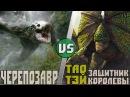 Черепозавр не Череподьявол vs Тао Тей фильм Великая Стена