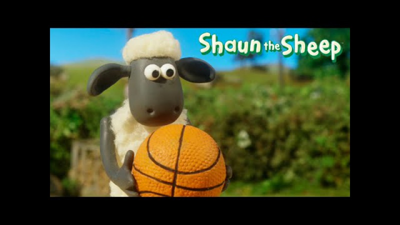 Shaun the Sheep Championship Full episodes compilation | Барашек Шон Овцечемпионат. Все серии подряд