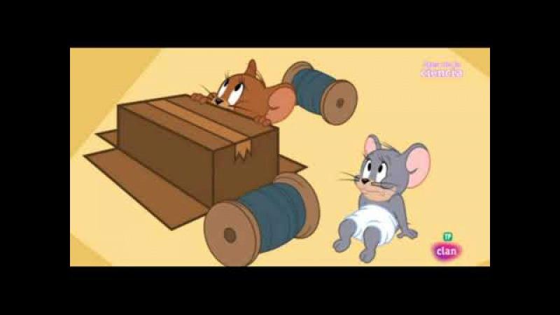 El Show de TOM y JERRY Emparejamiento Felino