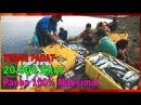 MANTAP Tebar Padat Ikan Bandeng 20000 Per 3 Hektar Panen Maksimal PupukTambak Bandeng Yang Bagus