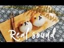 REAL SOUND Shiba-inu Honey Rice Cake ~ Chos daily cook