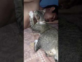 Кошка лижет мужской сосок