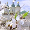 Подслушано Астрахань | ОД