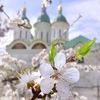 Подслушано Астрахань | АО