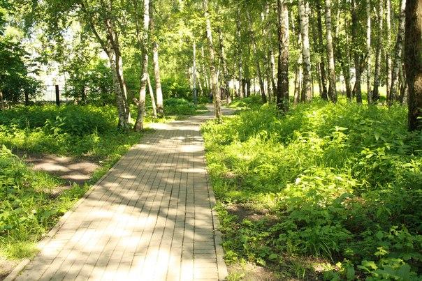 Парк возле дома, такой ухоженный с дорожками во все нужные стороны