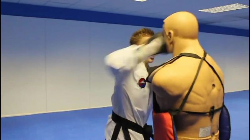 Taekwondo_Kicking_and_Training_Sampler_on_the_BOB_XL.mp4