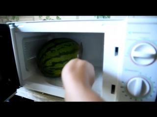 Что будет, если засунуть арбуз в микроволновку ?