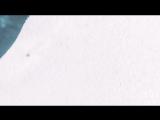 ❤ Polska ❤ Kurva ❤