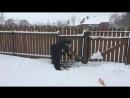 Снежная раскопка часть 2