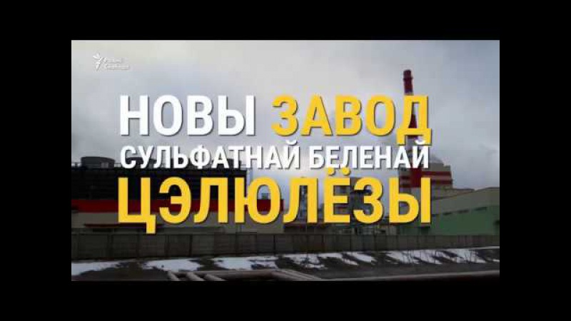 200 чалавек пратэстуюць супраць заводу пад Сьветлагорскам | протесты под Светлог ...
