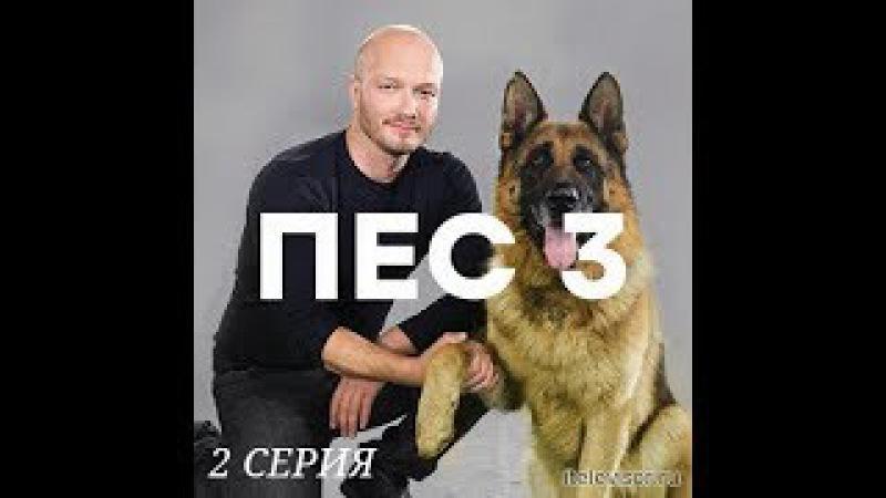 Пёс 3 сезон 2 серия