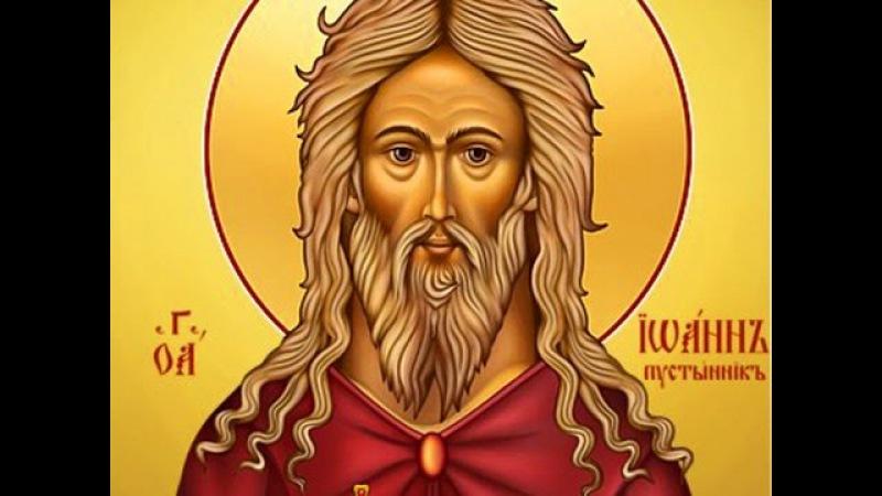 Преподобный Иоанн Египетский, пустынник - 11 апреля день памяти. Житье и образ.