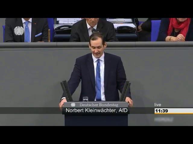 Bundestag AfD macht MERKEL BRUTAL FERTIG!