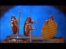 ТАНЦУЮЩИЕ ТАРАКАНЫ dancing cockroaches