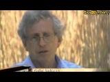 Die Kornkreis Reportage -  Die RealMystery UFO Akten
