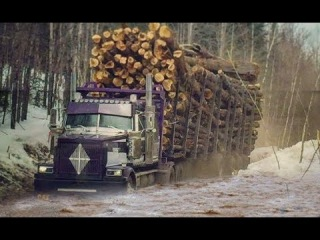 Best Logging Truck Drivers Skill With Dangerous Extreme Fields (Part 3)