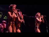 KID CREOLE &amp THE COCONUTS - Stool Pigeon - Live At Rockpalast (live video)