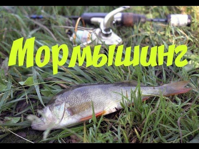 Мормышинг Портновская Ловим бычка и окуня