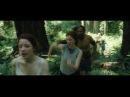 Quantum entanglement scene music scene - Captain Fantastic 2016