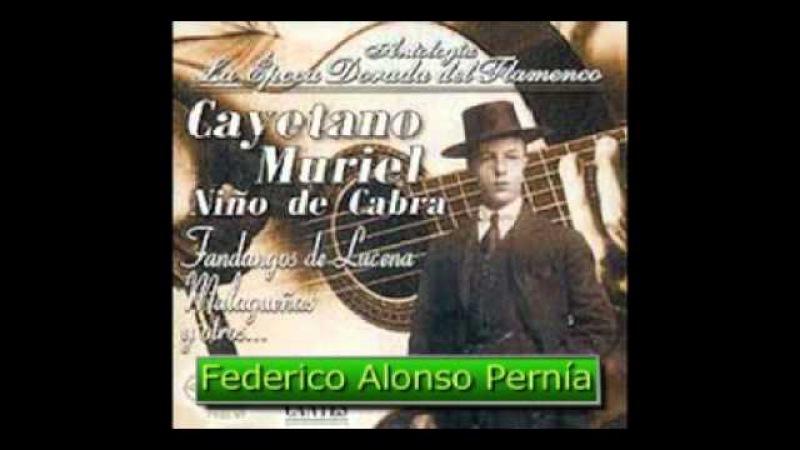 CAYETANO MURIEL NIÑO DE CABRA