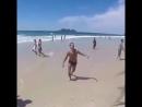 на пляже играют два мужика собака и девушка