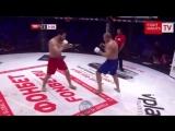 Халид Муртазалиев - моменты боя на Fight Nights 87