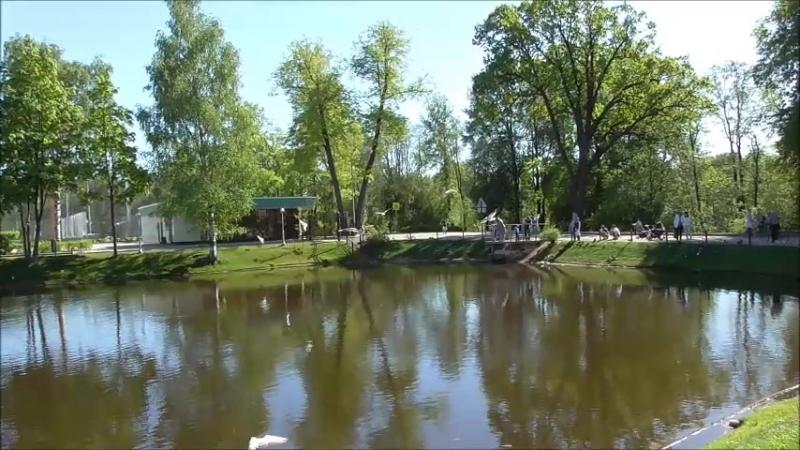 Удельный парк 20.05.18.