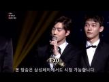 171115 @ 2017 Asia Artist Awards