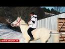 Рамзан Кадыров совершил конную прогулку по горным склонам Ножай Юртовского района