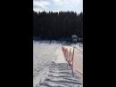 Лыжи март 2018 Алемасово
