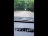 Зелёная Арка из крон деревьев по дороге на д.Ерши(любительская съёмка)