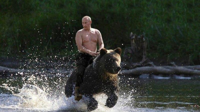Русский медведь атрибут российского государства и представитель её верховного правителя