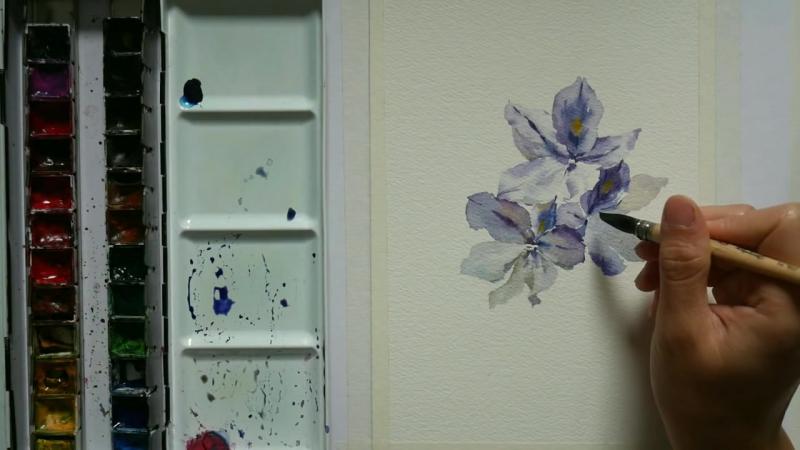 Comment peindre la jacinthe deau en aquarelle (Francais)