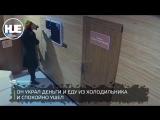 Конь в пальто вынес из сауны в Новочеркасске еду, деньги и огнетушитель