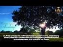 ҮЙІҢІЗДЕ ОСЫ СҮРЕНІ ҚОЙЫП ТЫҢДАҢЫЗДАР! БАҚАРА СҮРЕСІ 1-35 АЯТТАР ӨТЕ КЕРЕМЕТ ОҚИДЫ.3gp